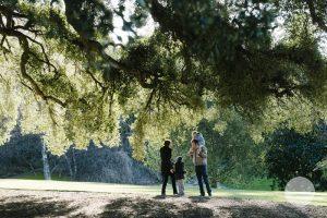 Family Portrait   Morgan Family   Hobart Botanical Gardens